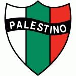 Club Deportivo Palestino SADP