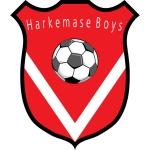 Voetbalvereniging Harkemase Boys