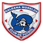 Club de Fútbol Ballenas Galeana Morelos