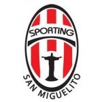 Academia de Fútbol Sporting San Miguelito