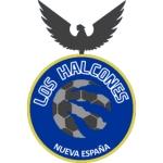Club Social y Deportivo Los Halcones