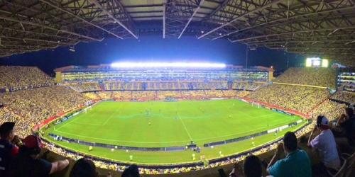 Defensor Sporting y Palestino avanzan a la siguiente fase de la Copa Libertadores