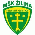 Mestský Športový Klub Žilina