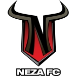 Toros Neza Fútbol Club